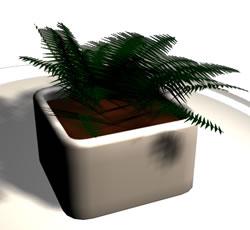 imagen Helecho 3d en maceta, en Plantas de interior 3d - Arboles y plantas