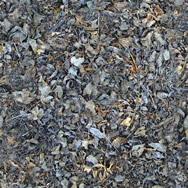 Hierba, en Follajes y vegetales – Texturas