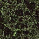 imagen Marmol verde, en Piedra - Texturas
