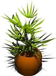 Planos de Maseta 3d, en Plantas de interior 3d – Arboles y plantas