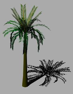 Planos de Palmera 3d, en Palmeras en 3d – Arboles y plantas