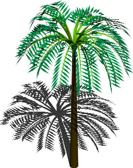 Planos de Palmera tropical, en Palmeras en 3d – Arboles y plantas