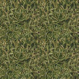 Pasto verde, en Follajes y vegetales – Texturas
