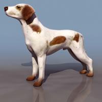 imagen Perro 3d, en Animales 3d - Animales