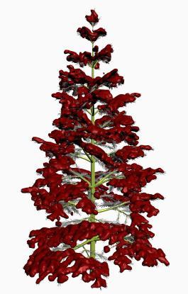 imagen Pino navideño en 3ds, en Arboles en 3d - Arboles y plantas