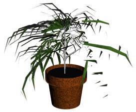 imagen Planta en maceta 3d, en Plantas de interior 3d - Arboles y plantas