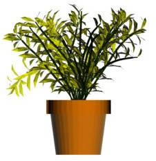 imagen Planta en maceta, en Plantas de interior 3d - Arboles y plantas