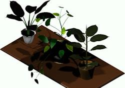 Planos de Plantas 3d, en Plantas de interior 3d – Arboles y plantas