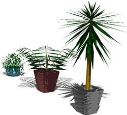 imagen Plantas de interior, en Plantas de interior 3d - Arboles y plantas