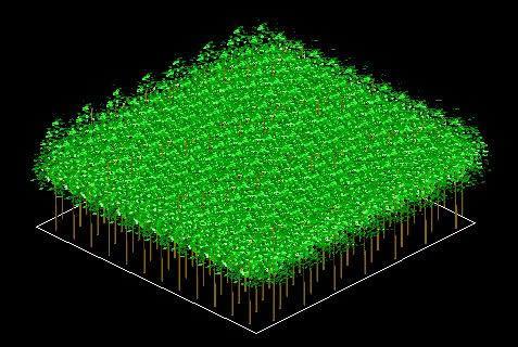 Planos de Platacion forestal en 3d, en Arboles en 3d – Arboles y plantas