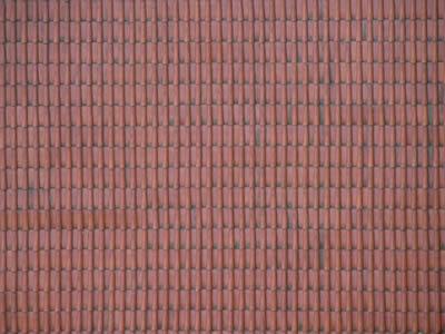 Teja roja, en Tejados – Texturas