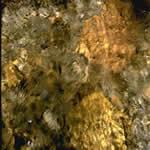 imagen Textura agua, en Agua - Texturas