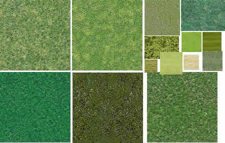 Texturas de pasto y vegetacion, en Follajes y vegetales – Texturas