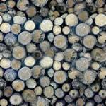 Troncos apilados, en Madera – Texturas